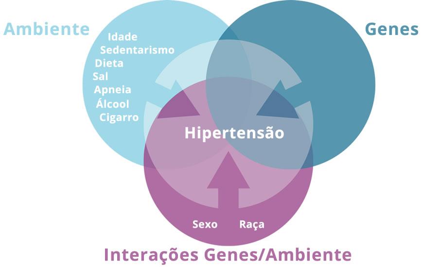 A Hipertensão é causada por um conjunto de fatores ambientais e genéticos, ou uma doença secundária que esteja por trás do aumento dos níveis de pressão arterial.